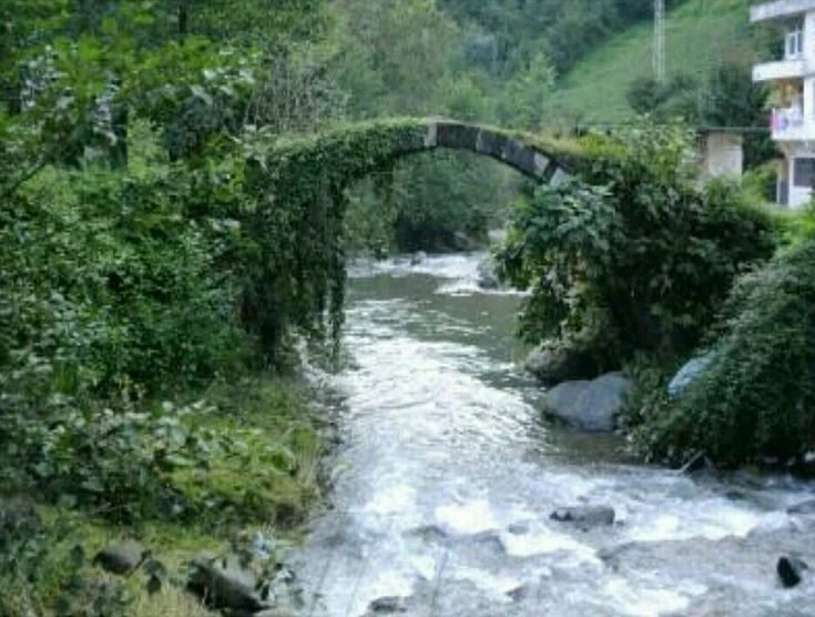 Bridge-Yoldere köyü köprüsü-Yoldere village-Hopa-Artvin