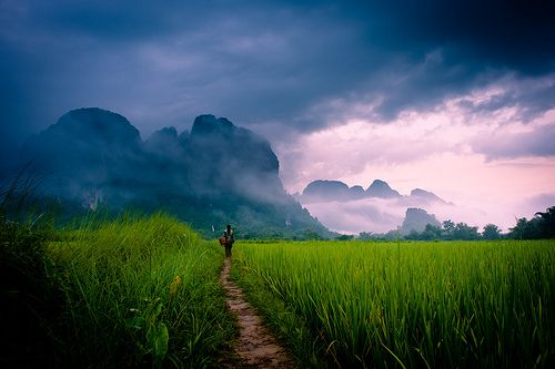 The countryside near Vang Vieng. Definitely find some time to get out of the town for a bit and explore