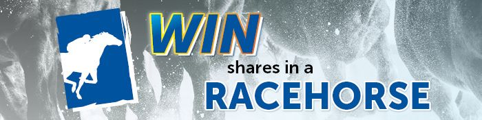 Want to win shares in a race horse?!  Here's your chance. #barfootthompson #horseracing