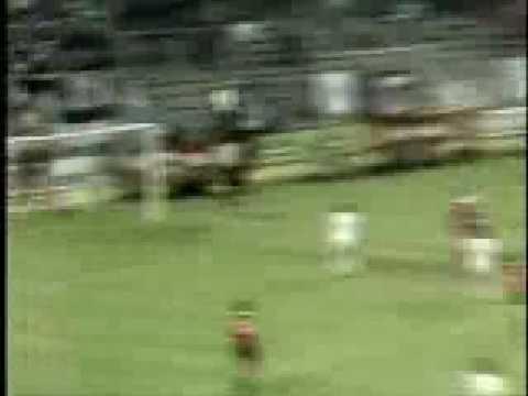 The 1980 European Cup Final win over Hamburg