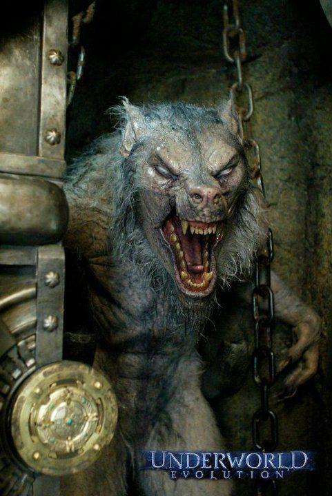 Monsters & Werewolves
