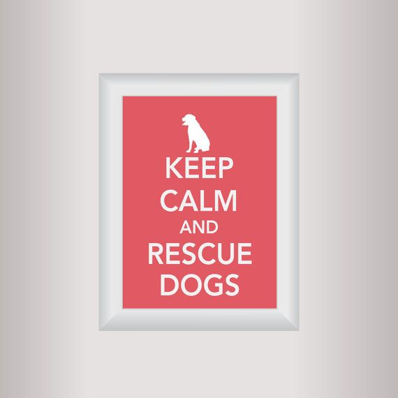 Dog Decor Art / Keep Calm Art Print / Living by affinityforyou, $10.00
