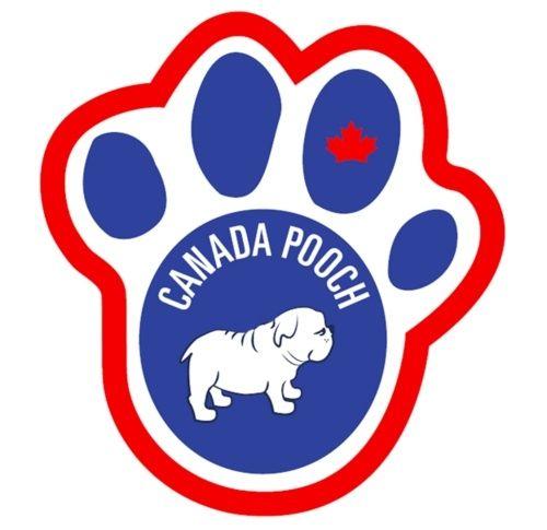 Canada Pooch on www.chic4dog.com