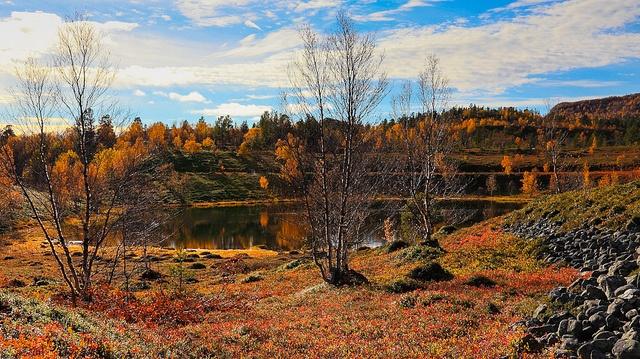 28 Best Shiretoko Hokkaido Japan Images On Pinterest