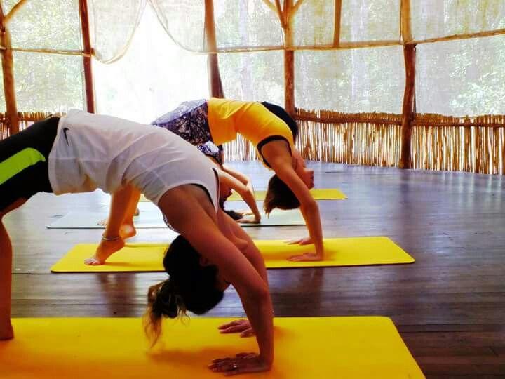 Yoga Kampı Urdhvadanurasana  #yoga #yogacamp #urdhvadanurasana