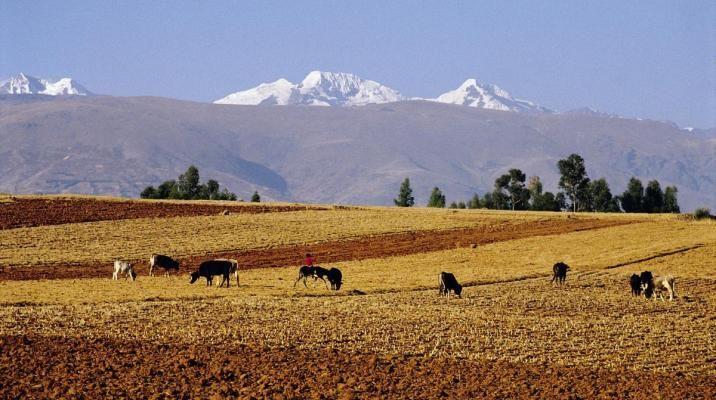 Bjergene omkring Cuzco
