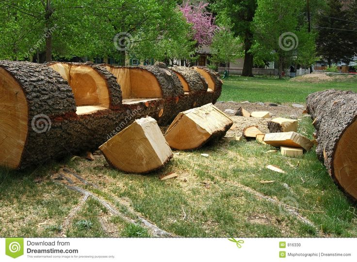 14 best images about log benches on trees