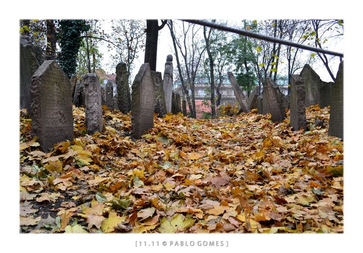O velho cemitério judeu / El viejo cementerio judio / The old jewish cemetery [2011 - Praga / Prague - República Checa / Czech Republic] #fotografia #fotografias #photography #foto #fotos #photo #photos #local #locais #locals #cidade #cidades #ciudad #ciudades #city #cities #europa #europe #historia #history #turismo #tourism #igreja #igrejas #iglesia #iglesias #church #churches
