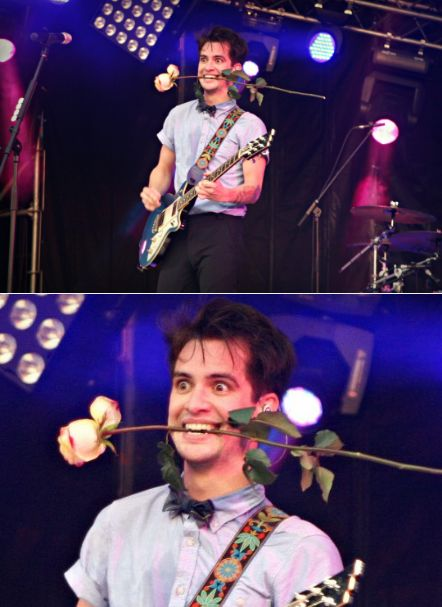 He looks insane. But I love him. I always will. Brendon is life.