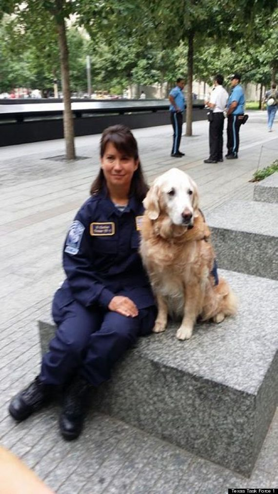 Very touching! Bretagne, a golden retriever, is the only remaining dog from ground zero.