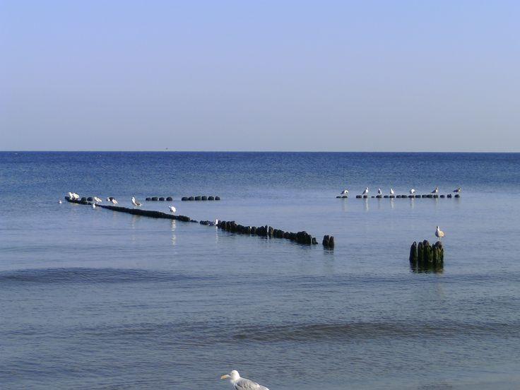 Droga do Kołobrzegu - 100 km wybrzeżem Bałtyku - http://www.turisticus.pl/100-km-wybrzezem-baltyku-relacja/ #kolobrzeg #morze