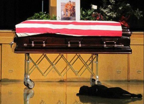 casket of Navy SEAL Jon Tumilson (KIA Aug 2011) guarded at his funeral by his chocolate lab Hawkeye, who refused to part from his side