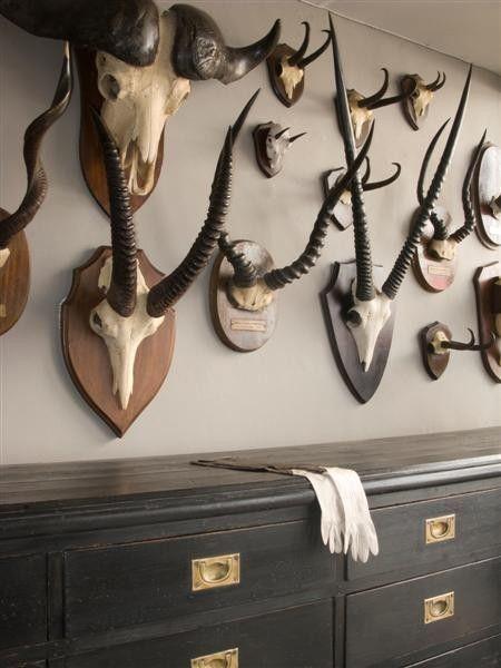 Trophy Room Design Ideas: #drawers #blackblack Drawersblack Drawers