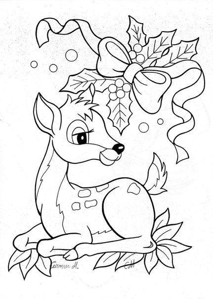 Baby reindeer under pine boughs