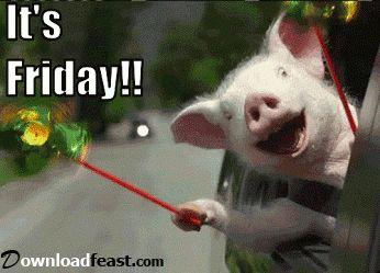 Funny Friday Morning Meme : Best freakin fantastic friday images happy