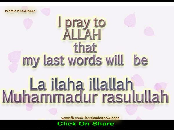 "I pray to ALLAH that my last words will be ""La ILAHA illa ALLAH...MOHAMED rasulALLAH"" #islamic_quotes"