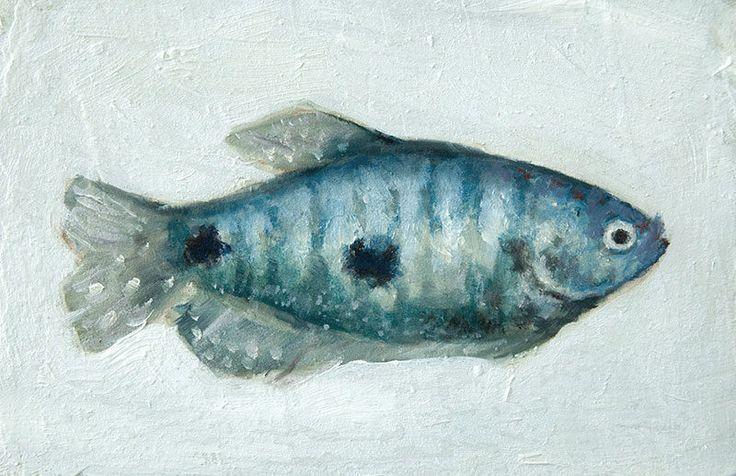 Tropical Blue Green Gourami Gouramis Fish Painting