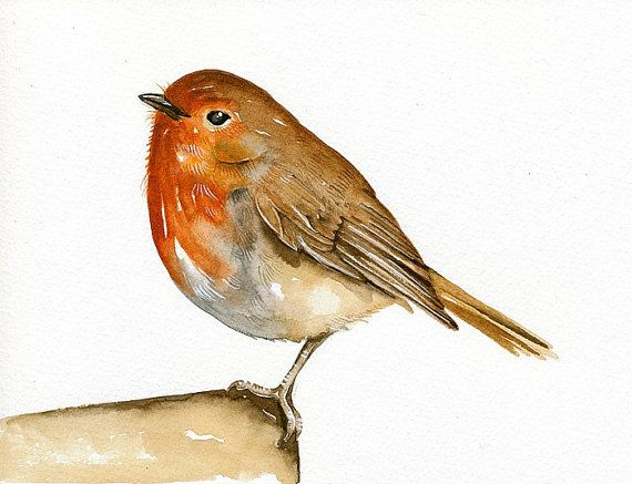 Robin Bird Art Watercolor painting - Print of my original watercolor - Limited edition - By Lorisworld