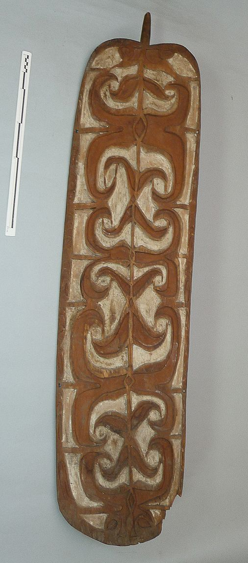 Asmat shield, Sirets river.  Donated to the Pitt Rivers museum in 1936