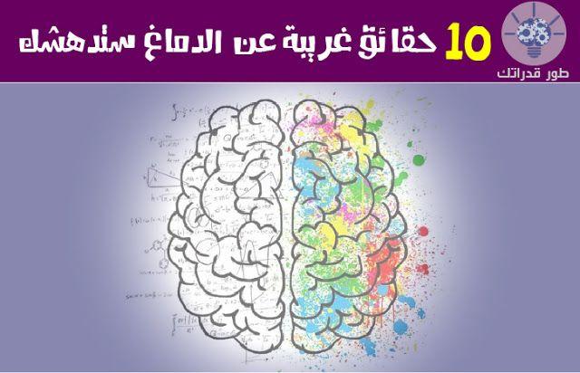 يعتبر الدماغ العضو الرئيسي في الجهاز العصبي لدينا اذ يتكون من عشرات المليارات من الخلايا العصبية وهو المسؤل عن جمع وتحليل المعلومات Art Map Map Screenshot