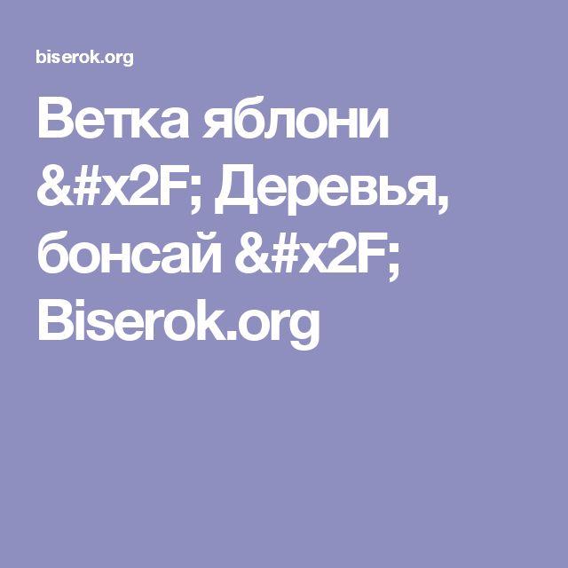 Ветка яблони / Деревья, бонсай / Biserok.org