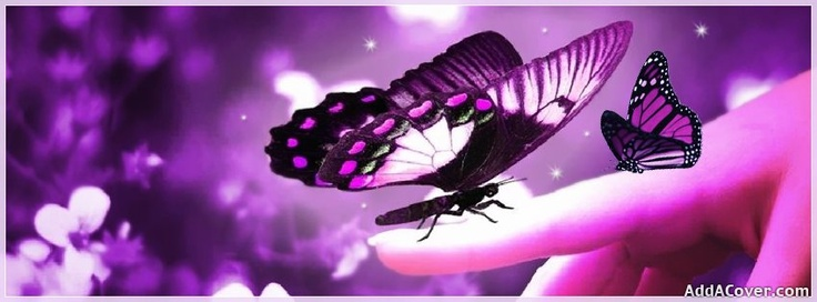If you love purple...or butterflies ;)