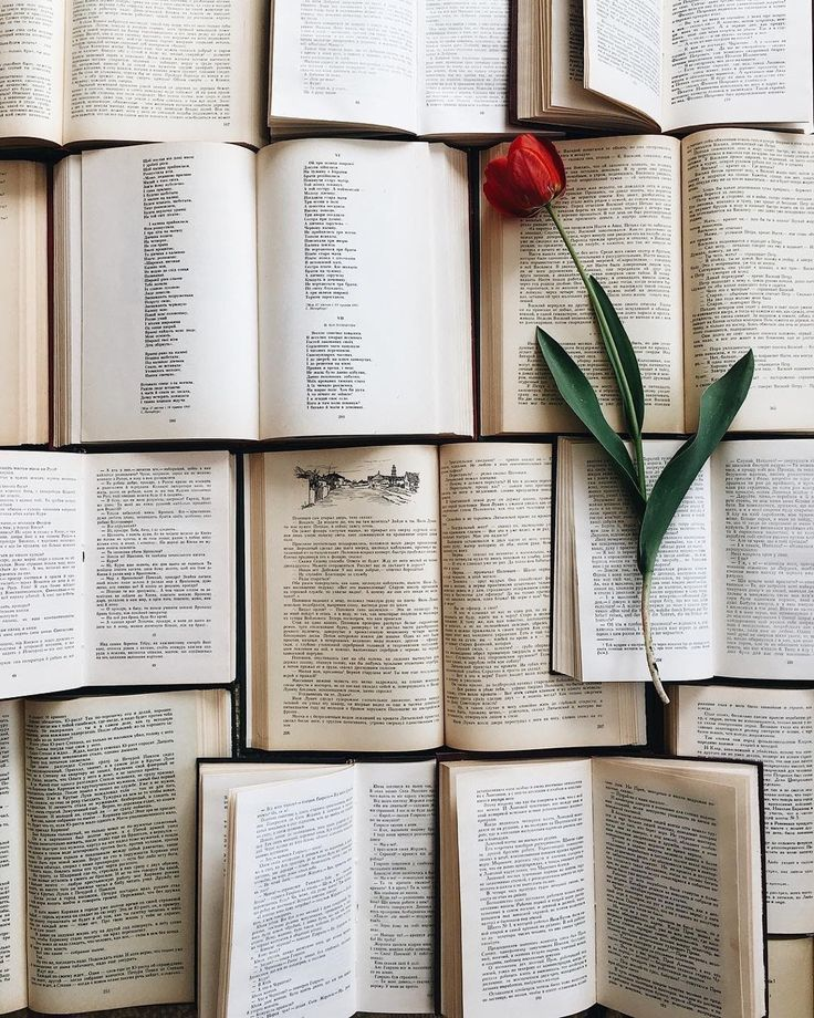 Pin by Trendy Mood on Lecture Reading Books Book wallpaper Book aesthetic Book photography