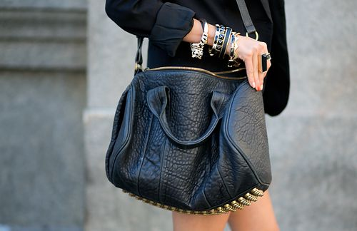 I have been in love with this Alexander Wang bag for so long. If only it didn't cost more than anything I own.