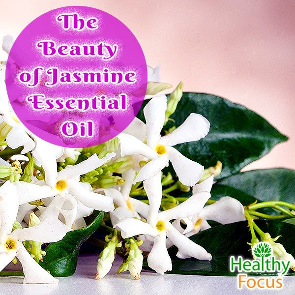 Just the sweet aromatic fragrance of Jasmine essential oil can do a lot to lift our spirits; some people claim that it instills feelings of poetry and romance. The essential oil is extracted from several jasmine species.