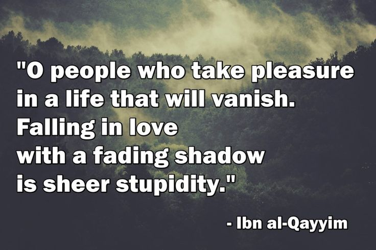 """O people who take pleasure in a life that will vanish. Falling in love with a fading shadow is sheer stupidity.""  – Ibn al-Qayyim"