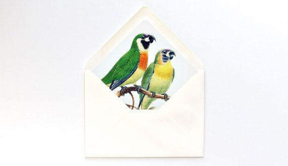 Pair of Parrots Envelope Liner Printable // A7 Euro by ettucreate
