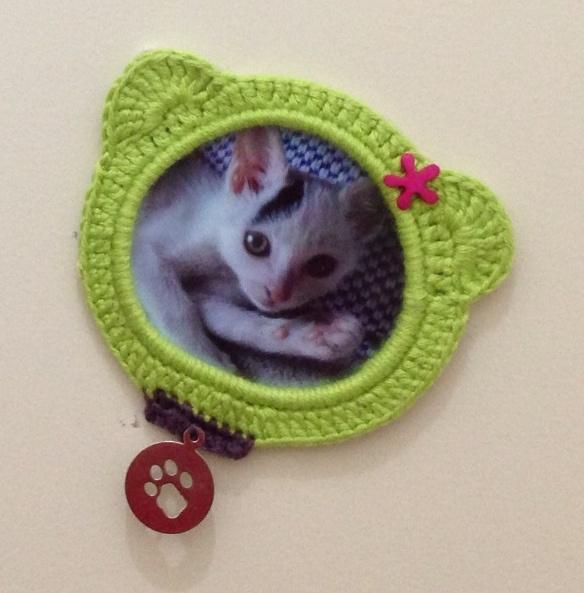 Cadre ourson vert avec mon petit chat ;)  http://nounoursetteonlin82.wordpress.com/2013/01/28/creer-avec-ses-papattes-1/