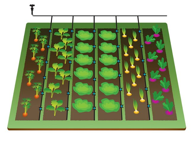 20 best Drip Irrigation images on Pinterest Drip irrigation