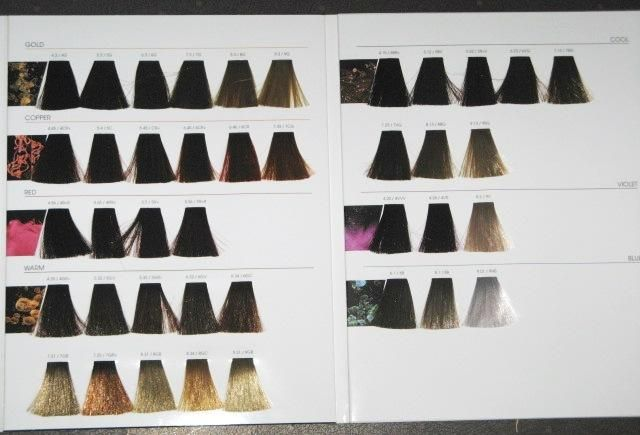 L Oreal Inoa Hair Color Swatch Book New Full Hair Color Chart Hair Color Swatches Color Swatch