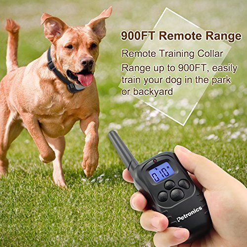330 Yard Remote Electric Dog Training Collar Rechargeable Shock Collar All Dogs #Petronics
