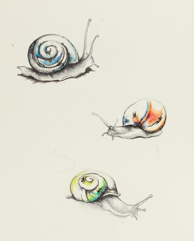 По своему эскизу Tatts Tattoo Tattoos Ink Inked: 25+ Best Ideas About Snail Tattoo On Pinterest