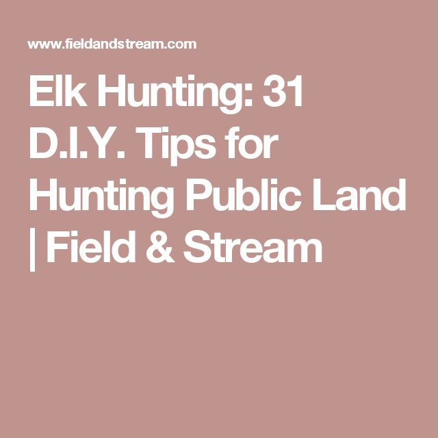 Elk Hunting: 31 D.I.Y. Tips for Hunting Public Land | Field & Stream