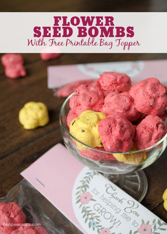 Flower Seed Bombs with Free Printable great for a Mother's Day gift or for a teacher gift!