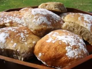 Notes from the Vegan Feast Kitchen/ 21st Century Table: NO-KNEAD, REFRIGERATED, SORT-OF-POT-BAKED CIABATTA BUNS