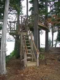 Google Image Result for http://www.cdymca.org/Libraries/Chinaghcook_AdventureTrip_Images/New_Tree_Fort.sflb.ashx