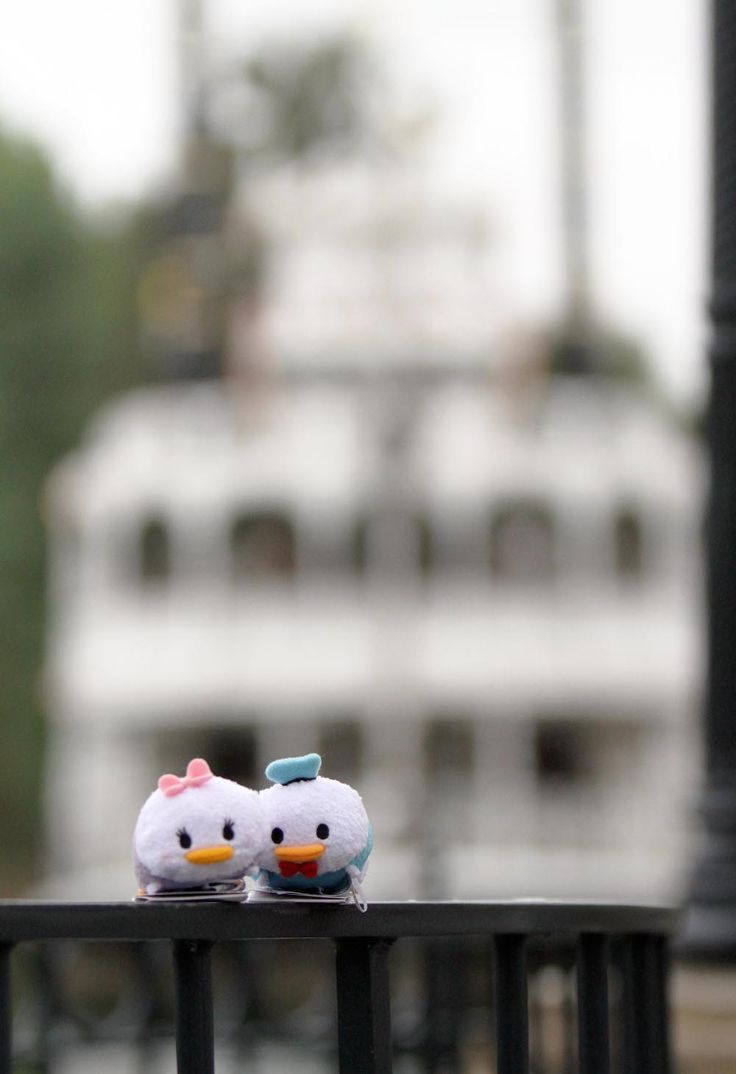 Zoom Around the Park with Tsum Tsum - Donald and Daisy