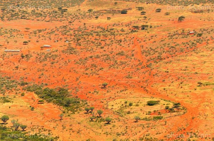 Landscapes (Africa,  Kenya,  bush,  Great Rift Valley) photos. Online sale of photos for graphic projects, calendars, postcards, wallpapers, Internet, etc.