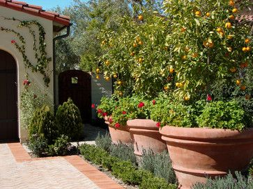 Large pots in flower beds.