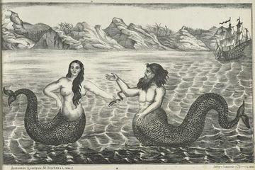 mermaids, are mermaids real, merfolk