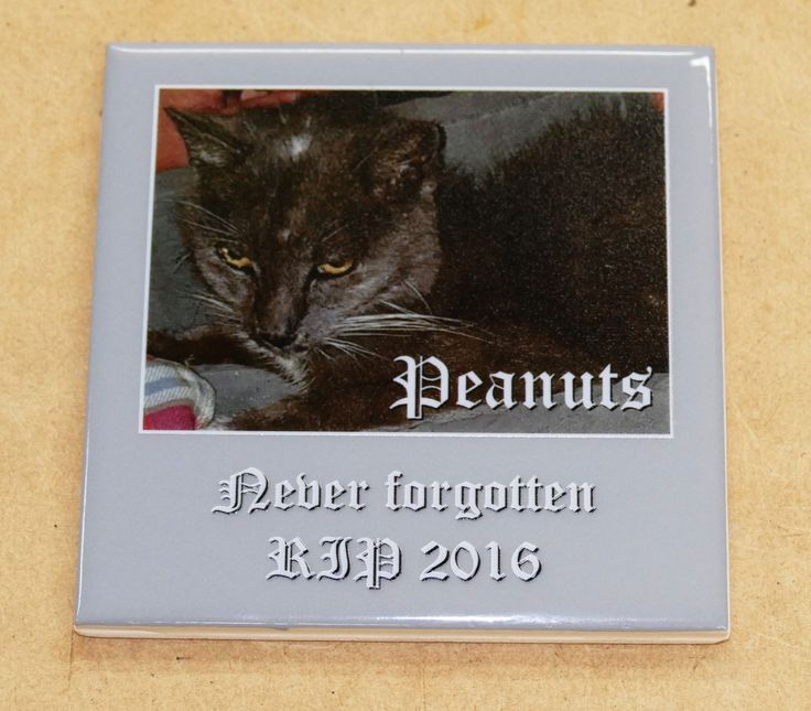 Pet plaques custom printed tiles with your loved pets, for use outdoors or indoors
