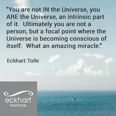 eckhart tolle quote ldquo you - photo #13