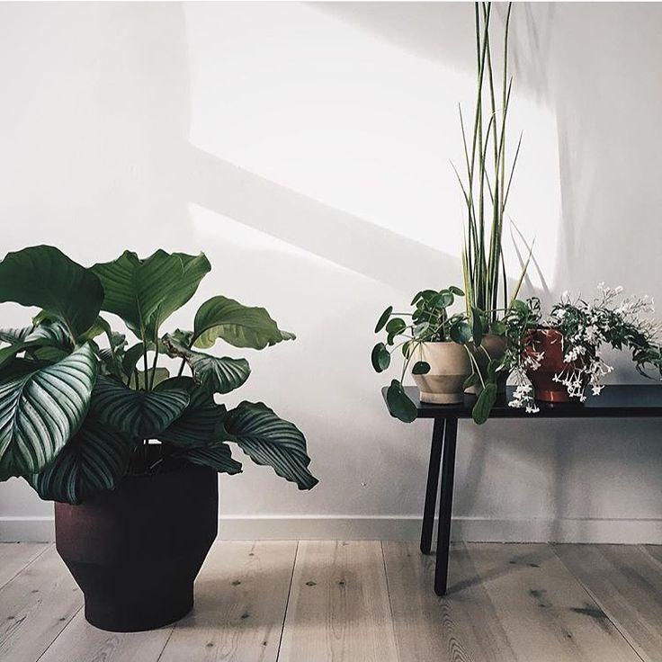 Edge pots design by Stilleben for Skagerak