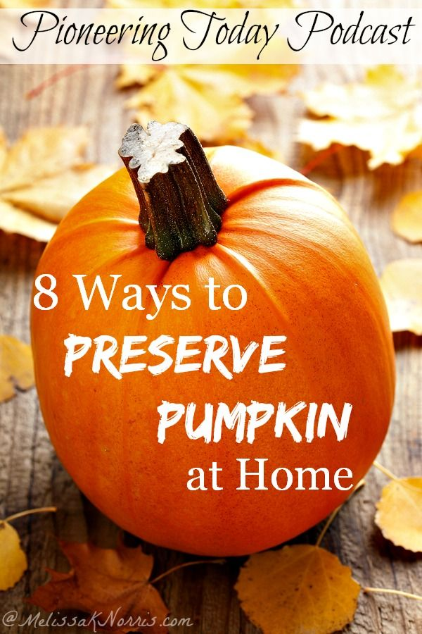 Fabulous ways to preserve pumpkin at home to use all year long. Super important to know which are true safe ways to can pumpkin. If you're a true pumpkin fan, you'll want to snag this now to put up your pumpkin while it's in season for year round use.: