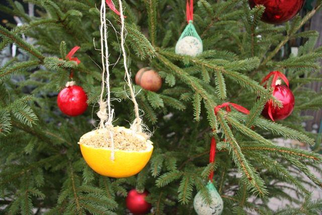 Queste piccole mangiatoie fai da te per gli uccellini sono addobbi perfetti per gli alberi di Natale da esterno #Christmas #diy #decorations #feeders #birdfeeders