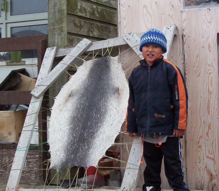 pangnirtung baffin island nunavut